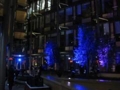 osvětlení stromů a keřů